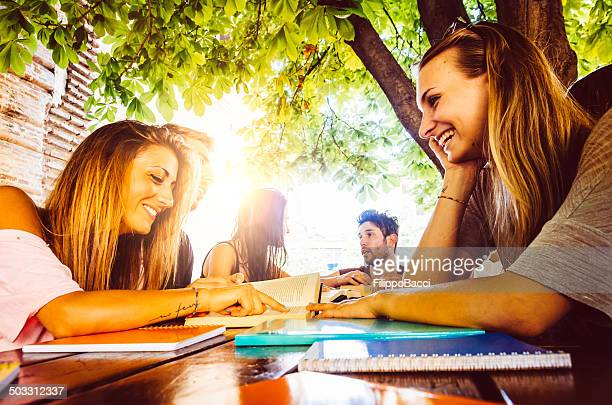 Friends studying outdoor