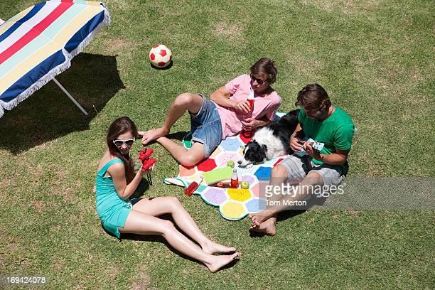 Freunde mit Sonnenbaden und purer Entspannung am sonnigen Wiese