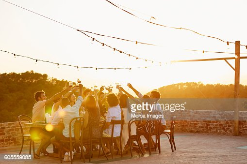 Friends toasting drinks during social gathering : Stock-Foto