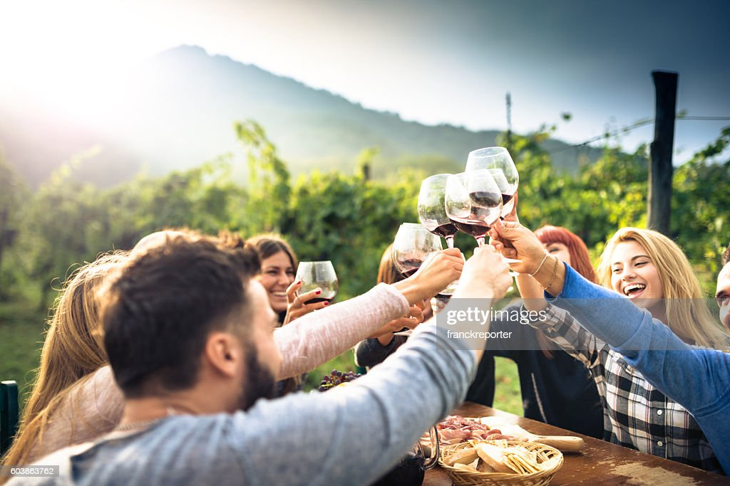 friends toasting with red wine after the harvesting : Stock Photo