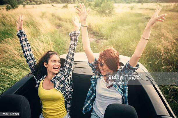Amici in viaggio