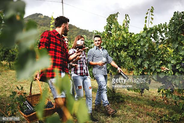 friends walking in the vineyard for picnic