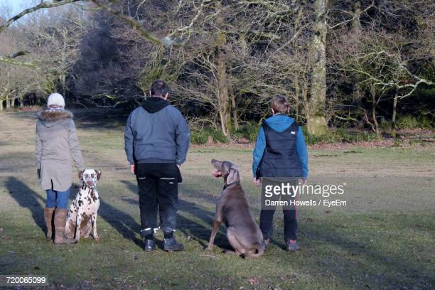 Friends With Weimaraner And Dalmatian Standing On Field