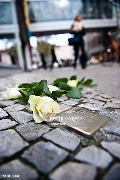 Frisch geputze Stolpersteine und darauf abgelegte weisse Rosen am 9 November 2013 in der Passauer Strasse in Berlin Gedenken an Rosa Lesser