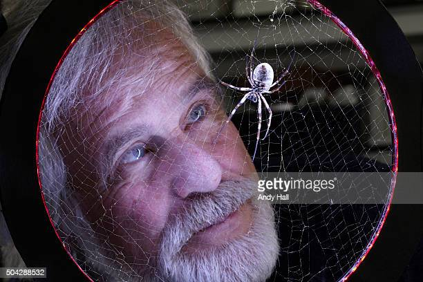 Fritz Vollrath research leader at the Zoology dept is heading a team of scientists known as the 'Oxford Silk Project' that is studying the biological...