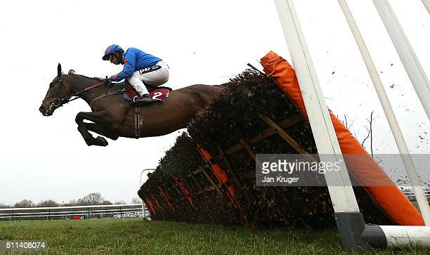 Frodon ridden by Sean Bowen wins the Ray Gilpin Victor Ludorum Juvenile Hurdle Race at Haydock racecourse on February 20 2016 in Haydock England