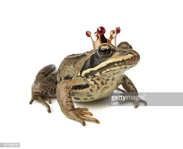 Frog wearing a crown against white background