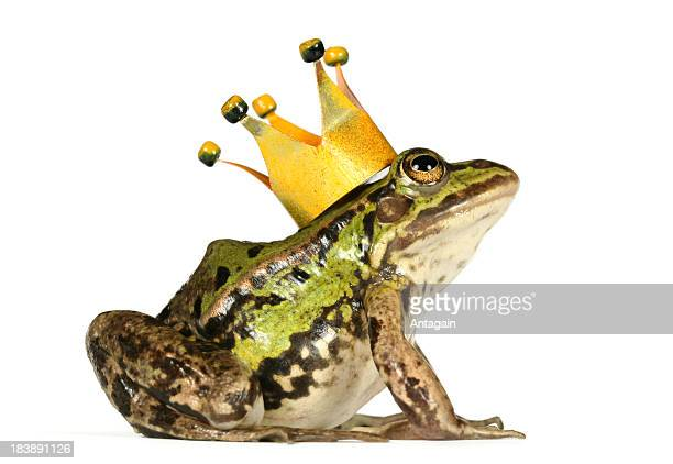 frog with crown