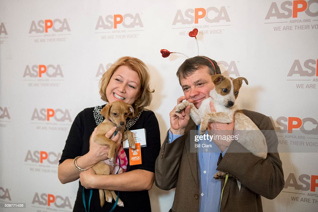 From left, Nancy Perry, senior vice president for ASPCA government relations, and Rep. Mike Quigley, D-Ill., pose with puppies at the photo booth during the ASPCA's Paws for Love Valentines Day pet adoption event in the Cannon Caucus Room on Friday, Feb. 12, 2016.