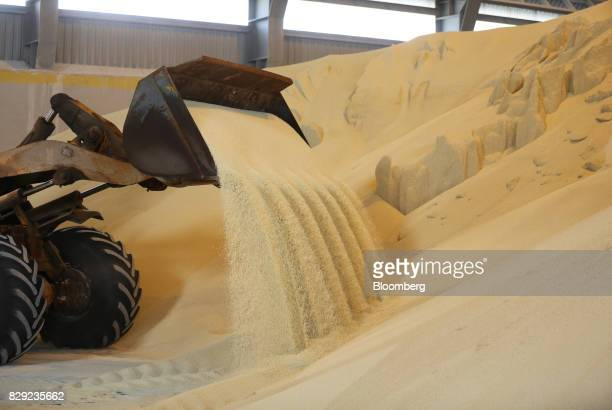 A front end loader moves granules of monoammonium phosphate into a storage warehouse at the PhosAgroCherepovets fertilizer plant operated by PhosAgro...