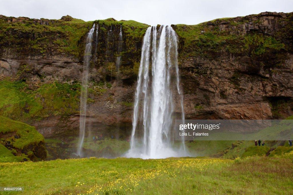 Front view of seljalandsfoss waterfall : Foto de stock