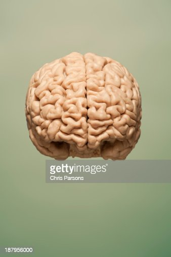 Frontal image of brain floating on  background