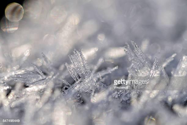 Frost, Macro