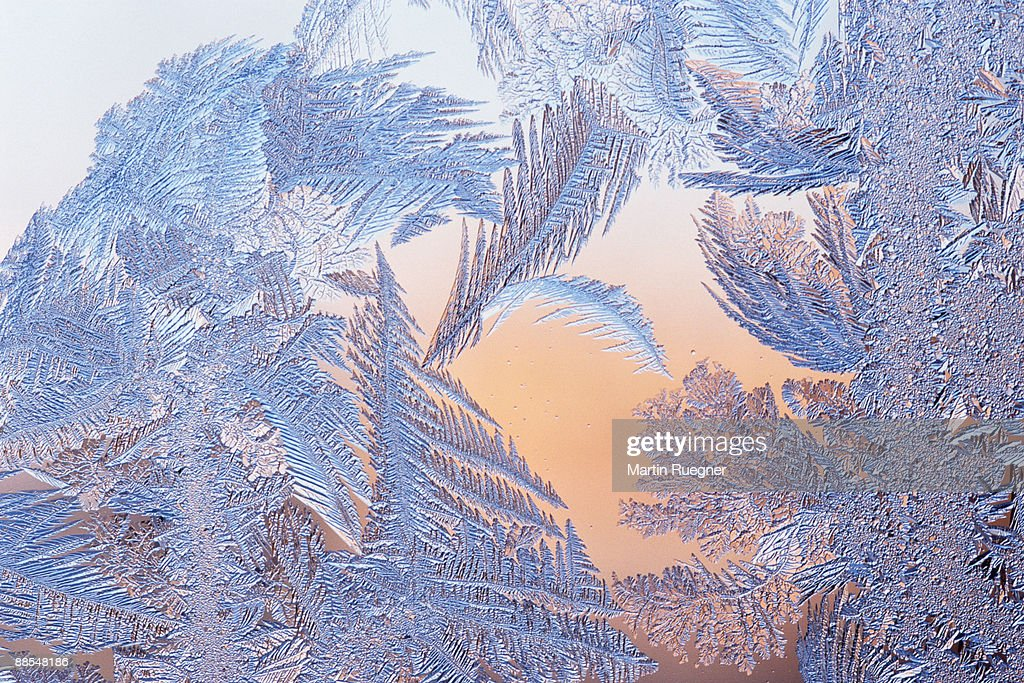 Frost on window : Stock Photo