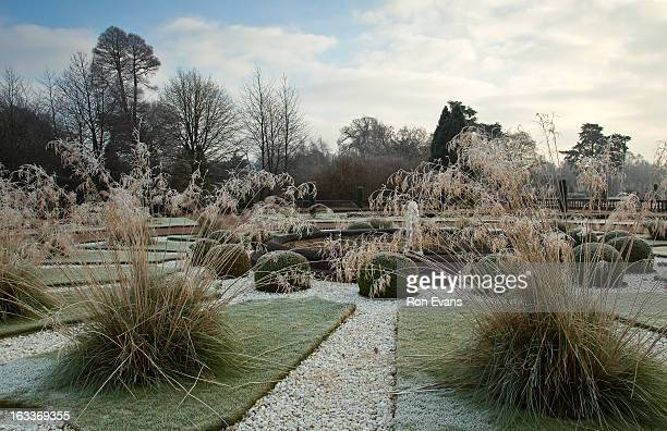 Frosted beds of grasses in formal garden