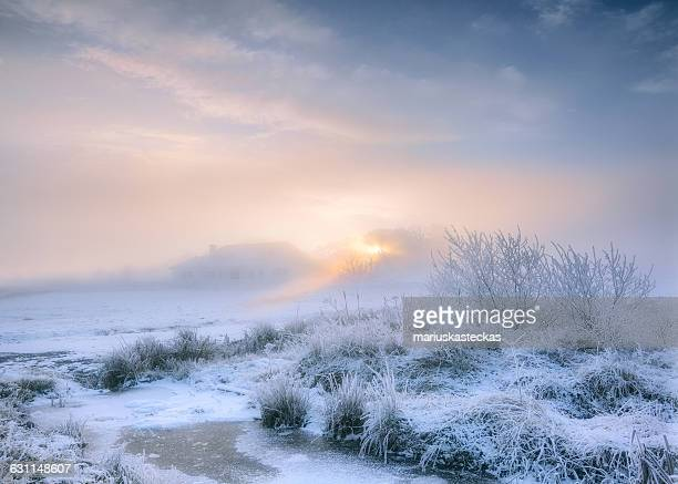 Frosty winter landscape, Cavan, Ireland