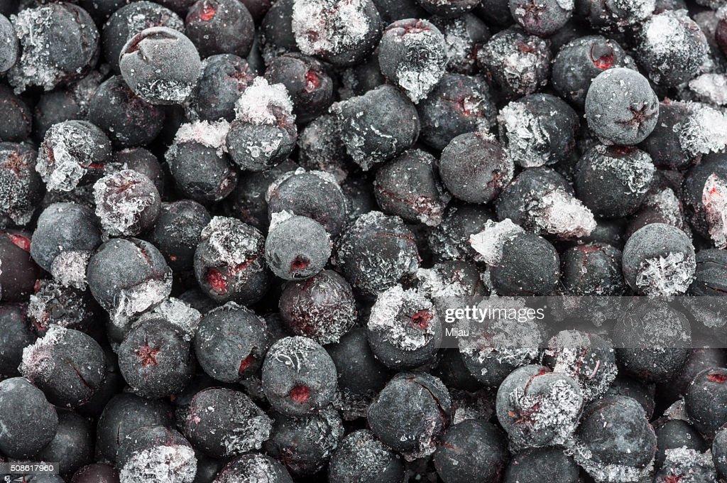 Frozen aronia berries : Stock Photo