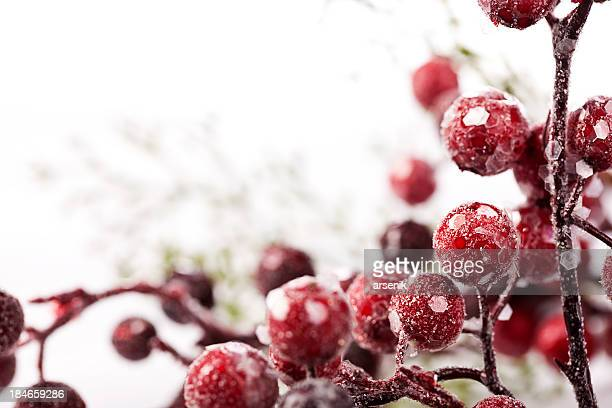 Frozen Christmas Berries