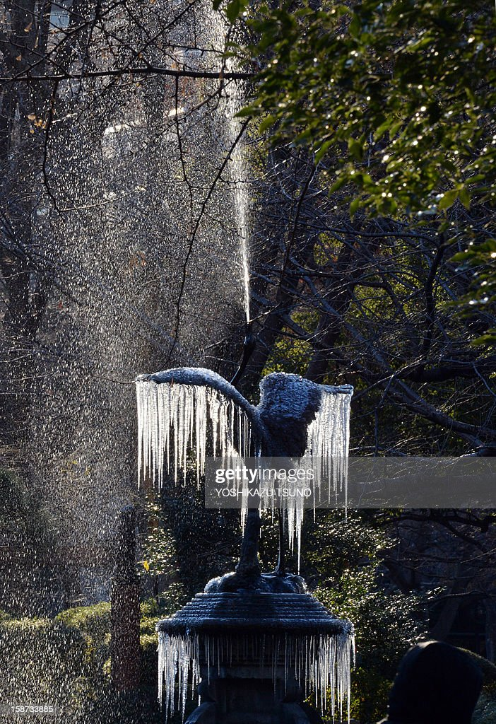 A frozen crane sculpture fountain with icicles hanging from its wings sprays water into the air at a Tokyo park on December 27, 2012. A cold atmosphere sent temperatures plummeting to the lowest levels this winter in many parts of Japan. AFP PHOTO / Yoshikazu TSUNO