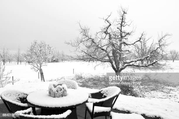 Frozen dining table in winter