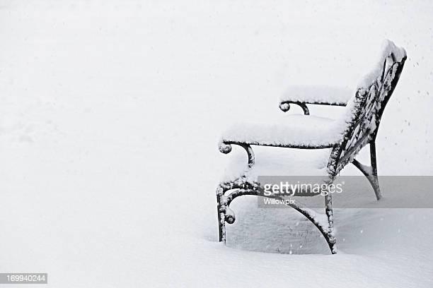 Frozen Garden Bench