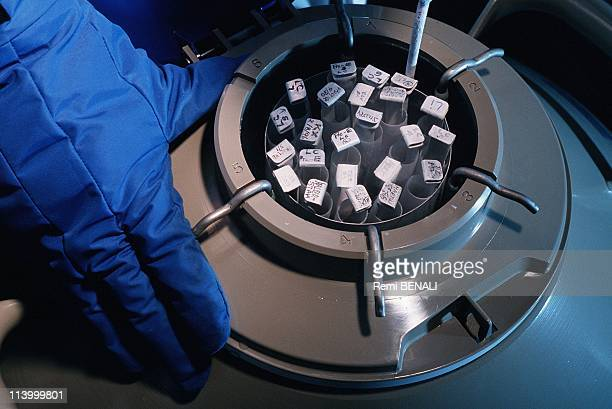 Frozen human embryos In New York United States On January 01 1997