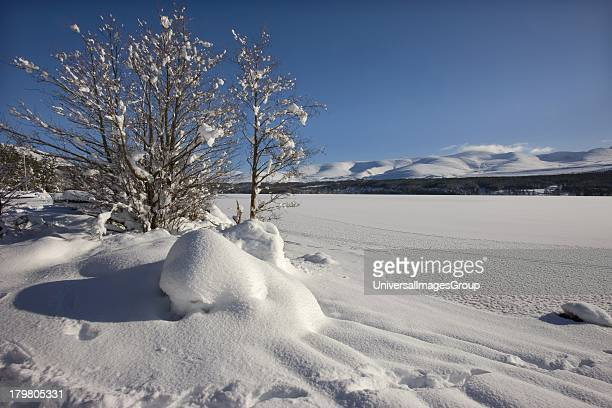 Frozen Loch Morlich and the Cairngorms Mountains Glenmore Highlands Scotland United Kingdom