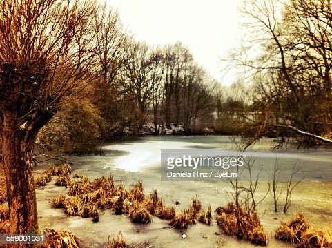 Frozen River In Winter