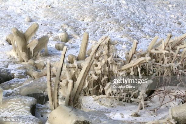 Frozen Scenic Landscape