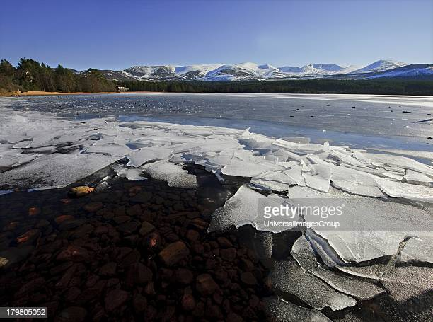 Frozen shore of Loch Morlich and the Cairngorm Mountains Glenmore Highlands Scotland United Kingdom