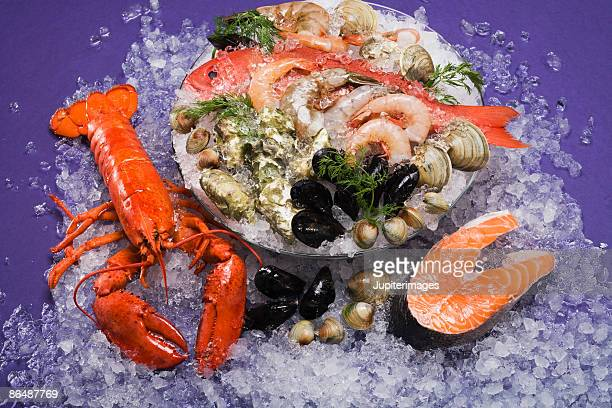 Frozen shrimp and lobster