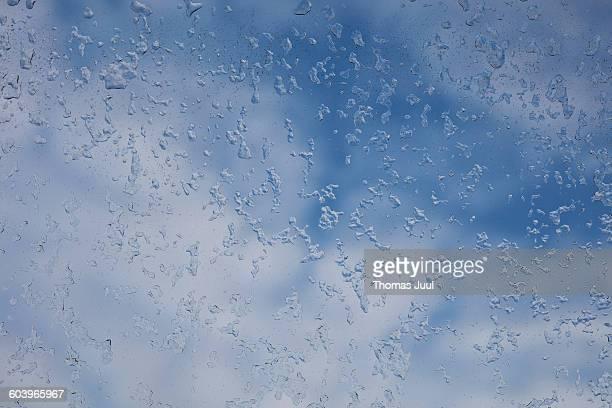 Frozen snow crystals on window