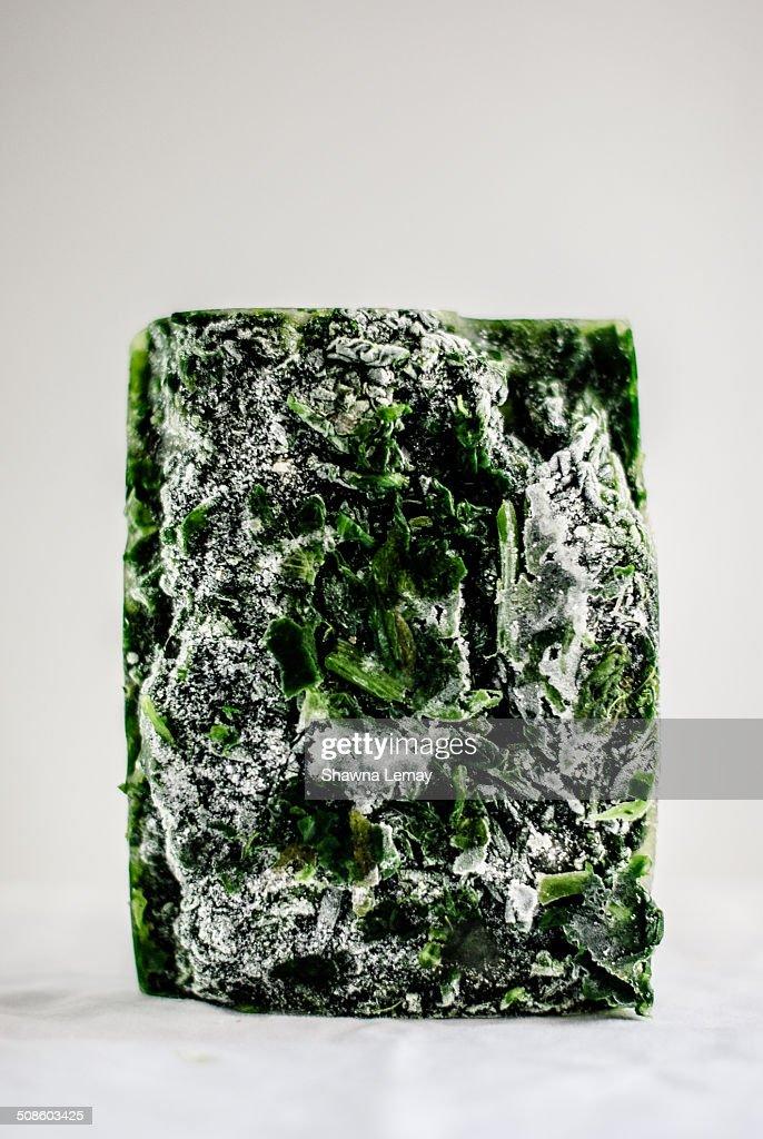 Frozen spinach : Foto de stock