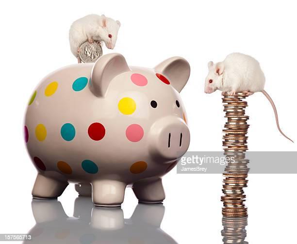 Frugal White Mice Family Saving Money, Filling Piggy Bank
