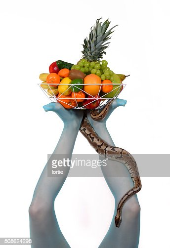 Fruit Basket On Legs two : Stock Photo