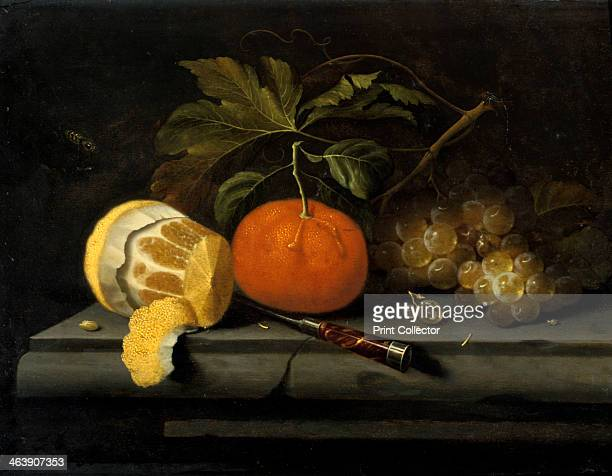 'Fruits on a Table Setting of Stone' c16531659