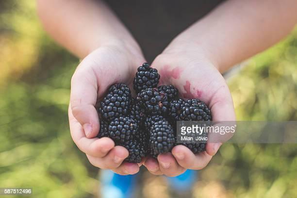Fruity delights