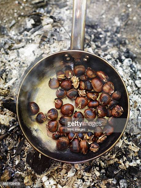 A frying pan over an open fire, with blackened fresh roasted chestnuts.