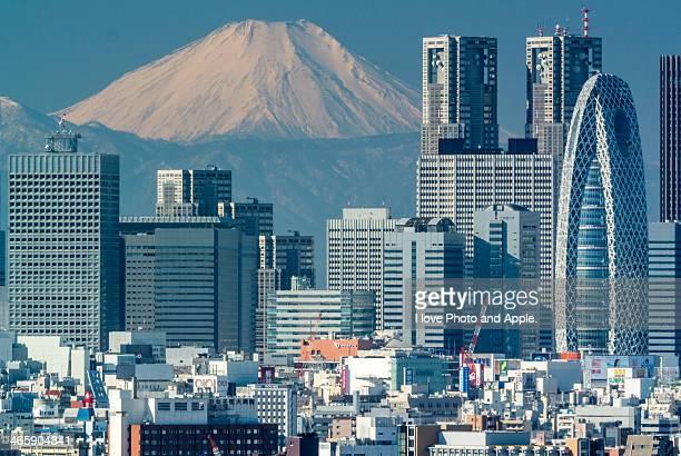 Fuji and Shinjuku