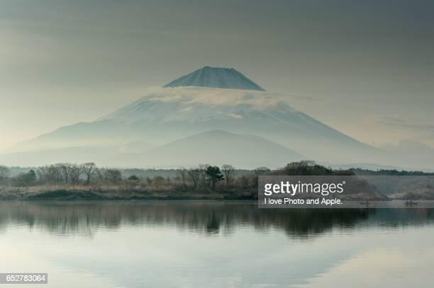 Fuji at Lake Shoji