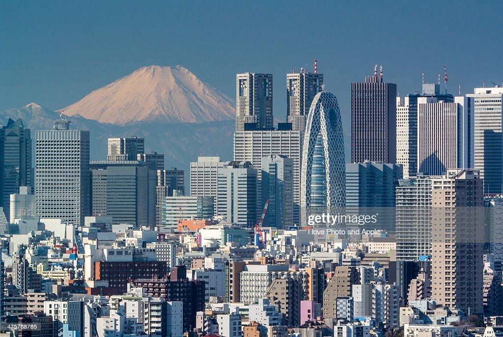 Fuji over Shinjuku