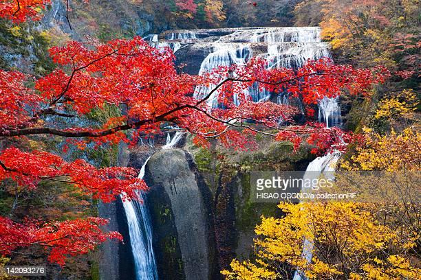 Fukuroda Falls in Autumn
