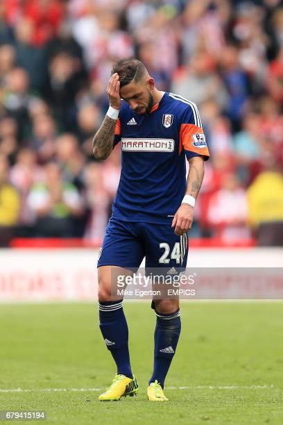 Fulham's Ashkan Dejagah looks dejected