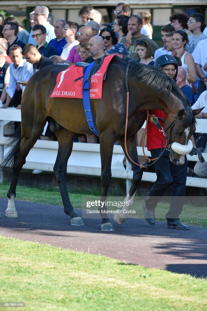 Full Drago is paraded before victory in the Grand Prix in Milan on June 18, 2017 in Milan, Italy.