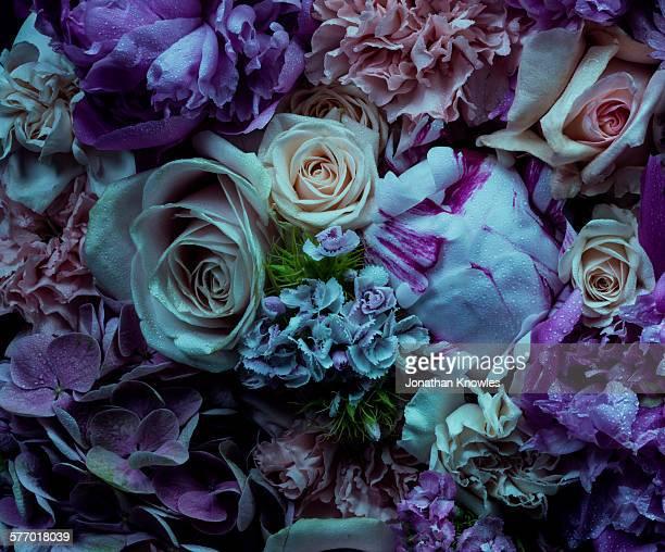 Full frame, atmospheric floral arrangement