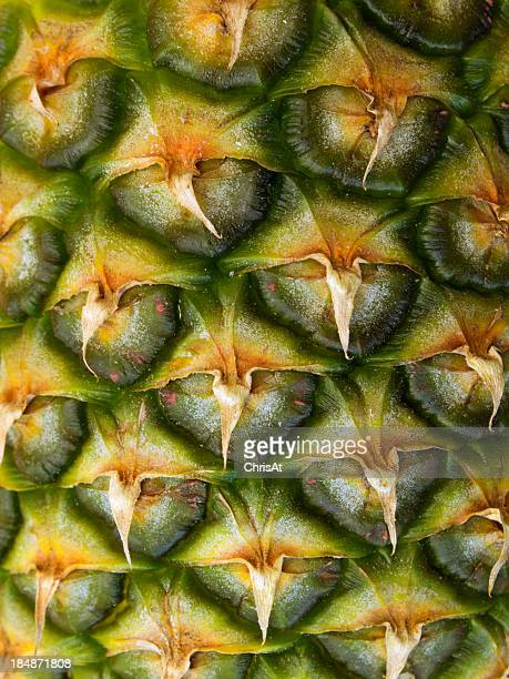 Full frame close up texture on a pineapple
