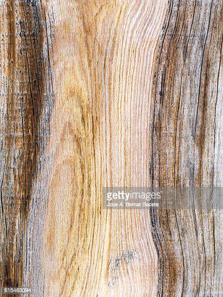 Full frame of an old wooden board with knots and rough textures