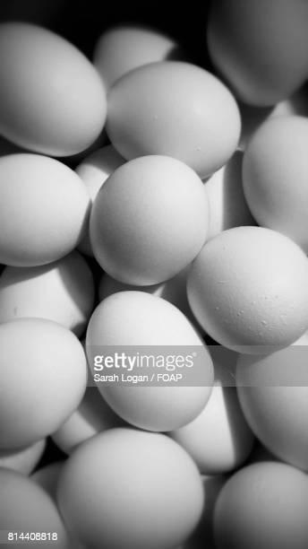 Full frame of eggs