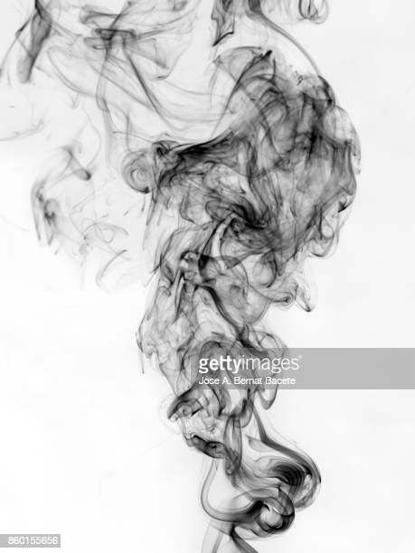 Full frame of forms and figures of smoke of color black in ascending movement produced, by an explosion on a white background