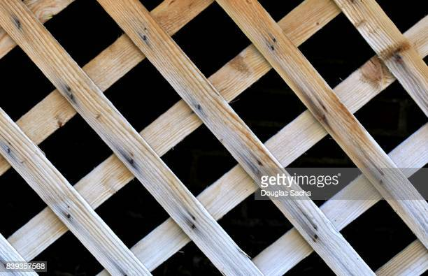 Full frame of the lattice under an outdoor deck